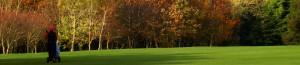 youghal golf club
